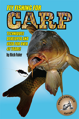 Fly fishing for carp for Fly fishing games